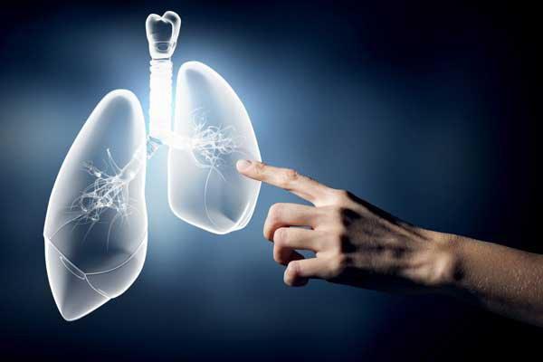 Sinh thiết phổi